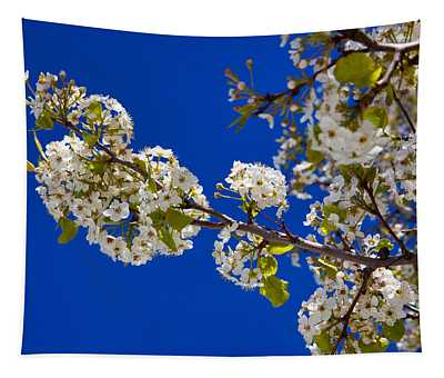 Pear Spring Tapestry