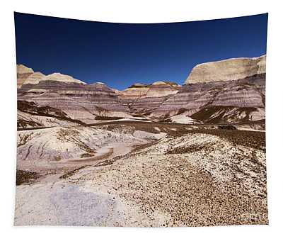 Petrified Forest Blue Mesa Tapestry
