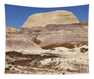 Petrified Forest Painted Desert Tapestry