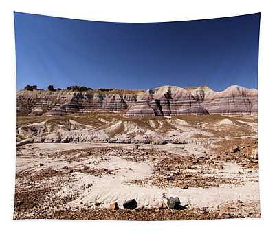 Petrified Painted Desert Tapestry