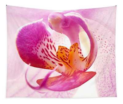 Pink Phalaenopsis Tapestry