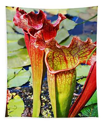 Pitcher Plant - Carnivorous Plant Tapestry