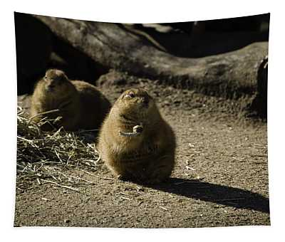 Prairie Dog Sees The Shadow Tapestry