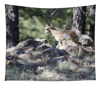Pronghorn Antelope Fawn Tapestry
