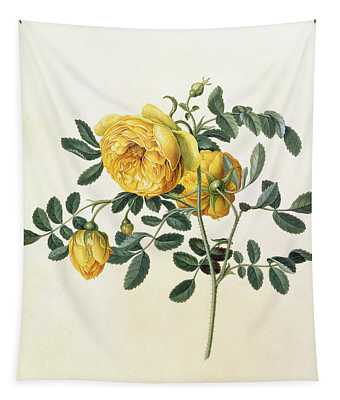 Rosa Hemispherica Tapestry