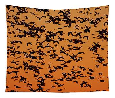 Snow Goose Migration Tapestry