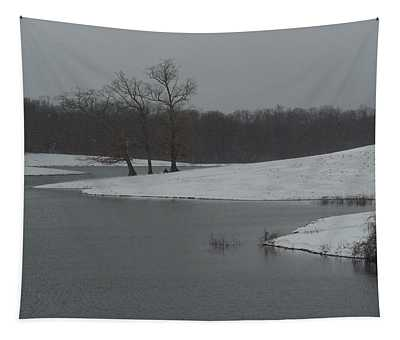 Snowy Lake 1 Tapestry