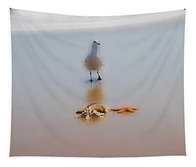 Soft  Tapestry