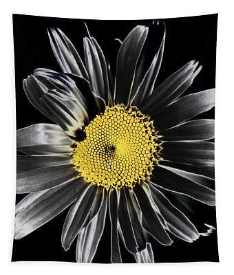 Solarized Daisy Tapestry