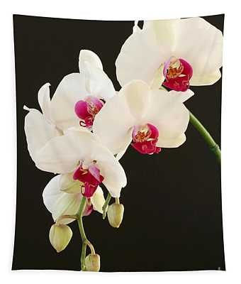 Spray Of White Orchids Tapestry
