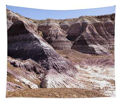 The Painted Desert Tapestry