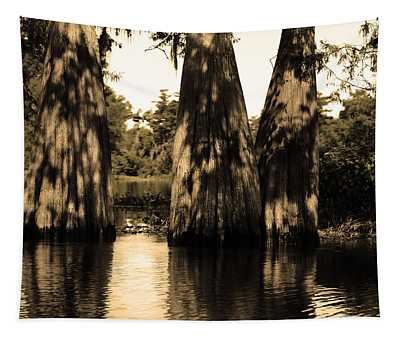 Trees In The Basin Tapestry