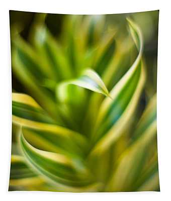 Tropical Swirl Tapestry