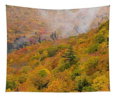 View From North Mountain Look-off Tapestry