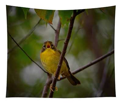 What Warblers Do Tapestry