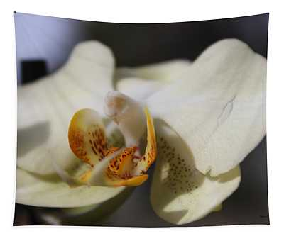 White Dove Orchid Tapestry