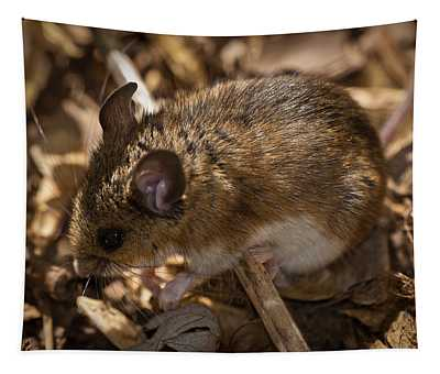White-footed Mouse Tapestry