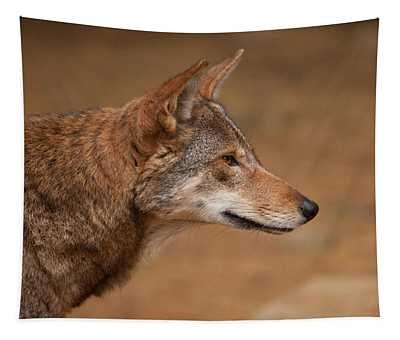 Wile E Coyote Tapestry