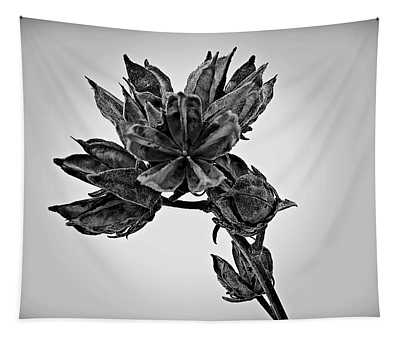 Winter Dormant Rose Of Sharon - Bw Tapestry