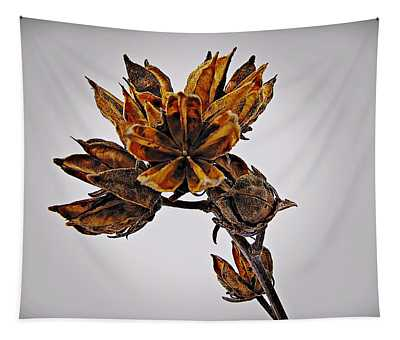 Winter Dormant Rose Of Sharon Tapestry