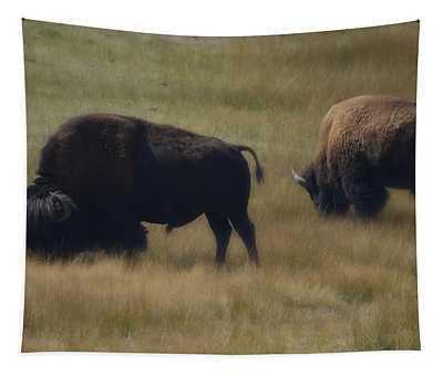 Wyoming Buffalo Tapestry