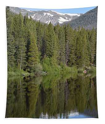 Chambers Lake Hwy 14 Co Tapestry