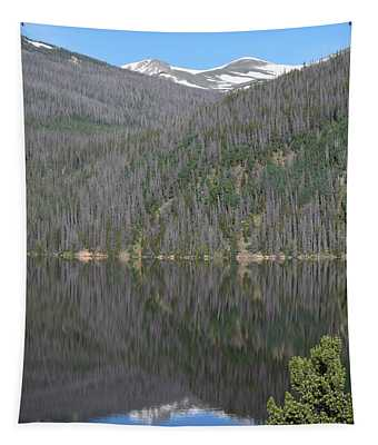 Chambers Lake Reflection Hwy 14 Co Tapestry