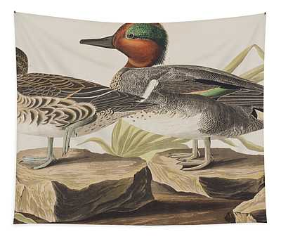 American Green-winged Teal Tapestry