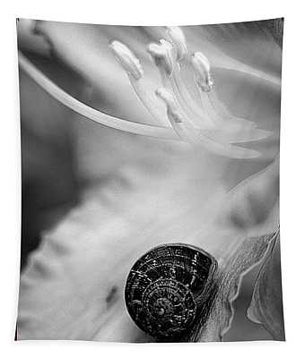B And White Floral With Snail Tapestry