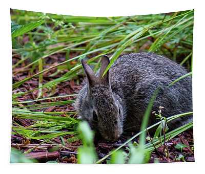 Baby Eastern Cottontail Rabbit In Grass Tapestry
