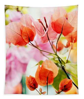 Tapestry featuring the photograph Bougainvillea by Jessica Jenney