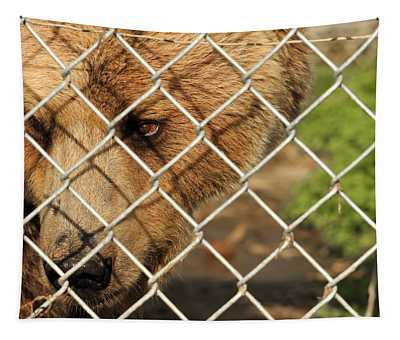 Caged Bear Tapestry