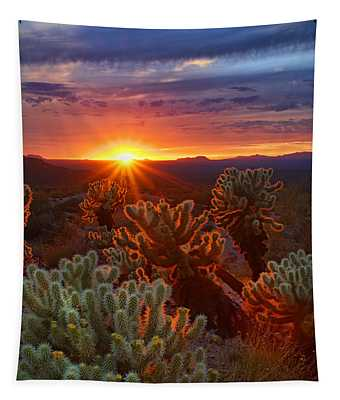 Cholla Sunset  Tapestry