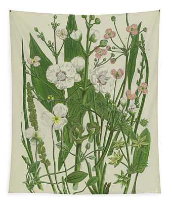 Common Star Fruit, Greater Water Plantain And Other Plants Tapestry