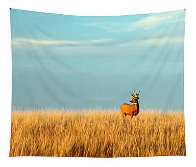 Fort Peck Buck Tapestry