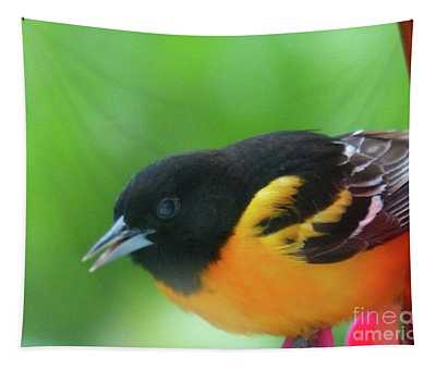 Good Morning Mr. Oriole Tapestry