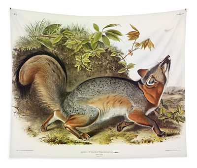 Grey Fox Tapestry