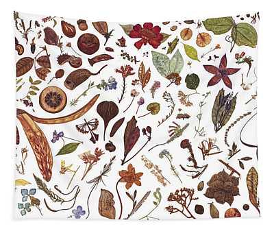 Herbarium Specimen Tapestry