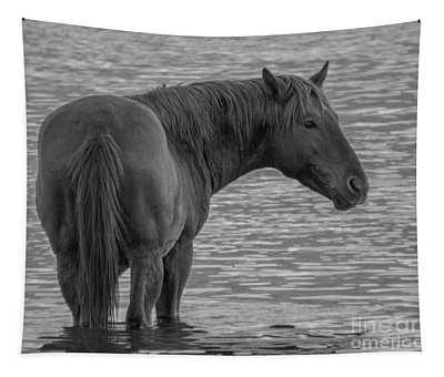 Horse 10 Tapestry