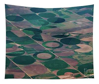 Tapestry featuring the photograph Irrigation Circles by Mae Wertz