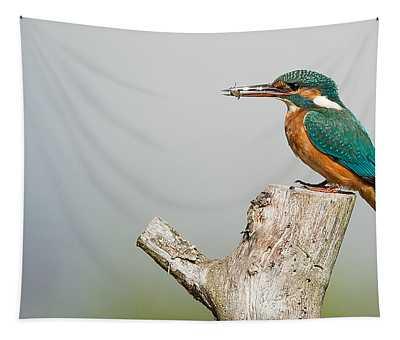 Kingfisher Wall Tapestries