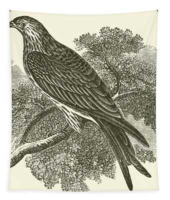 Kite Tapestry
