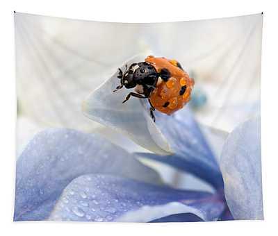 Ladybug Tapestries