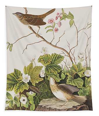 Lincoln Finch Tapestry