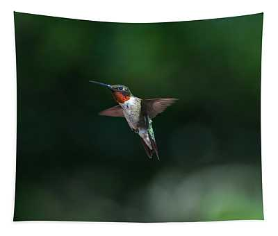 Male Ruby Throated Hummingbird Tapestry