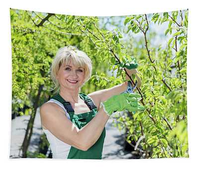 Mature Woman Gardener Cutting A Tree Branch. Tapestry