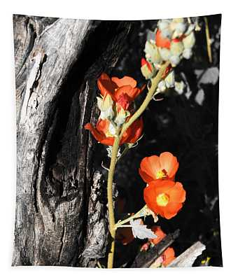 Orange Beauty Tapestry