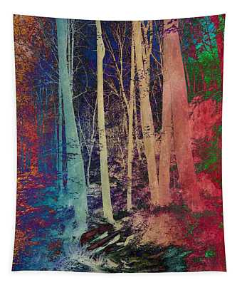 Path Tapestry
