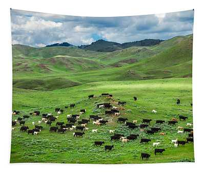 Prairie Grass Wall Tapestries