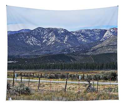 San Jacinto Mountains - California Tapestry
